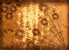 Grunge Background With Flowers. Retro Style Grunge Background With Flowers and Scratches Royalty Free Stock Photography