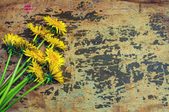 Grunge background with flowers Royalty Free Stock Images