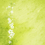 Grunge background with flowers Royalty Free Stock Photos