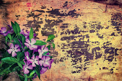 Grunge background with flowers Royalty Free Stock Photo
