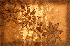 Grunge Background With Flowers and Scratches Royalty Free Stock Photography