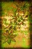Grunge Background With Flowers and Scratches Stock Image