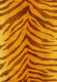 Grunge background - fur of a tiger Royalty Free Stock Photography