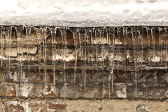 Grunge background with icicles Royalty Free Stock Photo