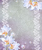 Grunge background with lily Royalty Free Stock Image