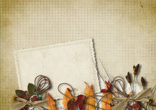 Grunge background with old card and flowers Royalty Free Stock Photography