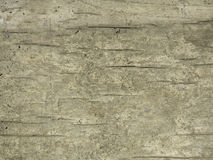 Grunge background old cracking wood Royalty Free Stock Images