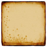 Grunge background, old paper. Pattern, flowers Stock Images