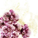 Grunge background with orchid flowers Stock Images