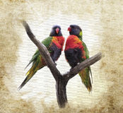Grunge  Background With Parrots Royalty Free Stock Images