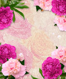 Grunge background with peonies Royalty Free Stock Images