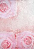 Grunge  background with pink  rose Royalty Free Stock Photos