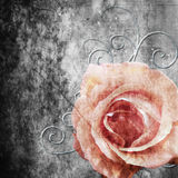 Grunge background with rose, pearls and swirl Stock Photography