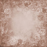 Grunge background with roses royalty free stock images
