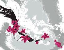 Grunge background with sakura Royalty Free Stock Images