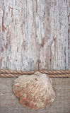 Grunge background with seashell, rope on sackcloth Stock Photography