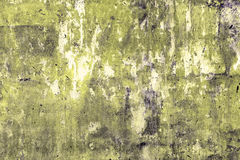 Grunge background with space Stock Images