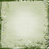 Grunge  background with  spring flowers Stock Photography