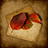 Grunge background with stack of old postcards. Grunge background with stack of old cards and autumn leaves Royalty Free Stock Images