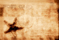 Grunge Background With Starfish. Vintage Grunge Style Postcard Background With Starfish Stock Images