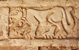 Grunge background with stucco texture and bas-relief carving of. A jaguar, pre-Columbian Maya civilization, Tula de Allende, Hidalgo state, Mexico Royalty Free Stock Images