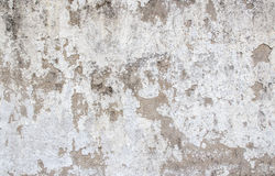Grunge background and texture for any design Stock Photo