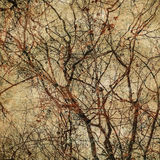 Grunge background with tree silhouettes Royalty Free Stock Image