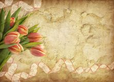Grunge background with tulips Stock Photo