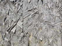 Grunge background wood texture Stock Images