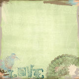 Grunge Background Worn Look Green and Birds Bohemian Art Deco Stock Photos