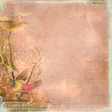 Grunge Background Worn Look Peach and Birds Bohemian Art Deco Stock Photo