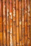 Grunge bamboo fence background Stock Images