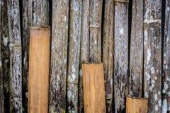 Grunge bambusa ściana z zielonobiałą foremką Obraz Royalty Free