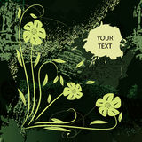 Grunge banner  in green colour Stock Image