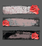 Grunge banners with rose. Grunge banners with red rose and drop Stock Images