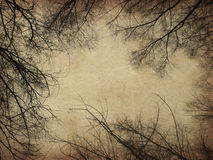 Grunge bare trees. Dark bare trees silhouettes on grunge paper background Royalty Free Stock Image