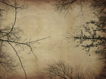 Grunge bare trees Royalty Free Stock Photos