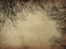 Grunge bare trees Stock Photography