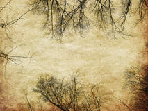 Grunge bare trees silhouettes Stock Photo