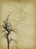 Grunge Baum Lizenzfreie Stockfotografie
