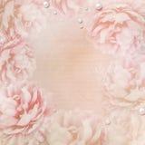 Grunge Beautiful Roses Background ( 1 of set) Royalty Free Stock Images