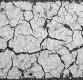 Grunge betonu cementu ściana obraz royalty free