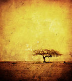 Grunge bild av en tree på ett tappningpapper Royaltyfri Foto