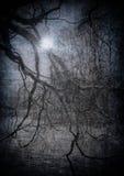 Grunge Bild des dunklen Waldes, Halloween-Hintergrund Stockfotos