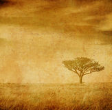 Grunge Bild eines Baums auf einem Weinlesepapier Lizenzfreies Stockbild