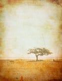 Grunge Bild eines Baums auf einem Weinlesepapier Lizenzfreie Stockfotografie