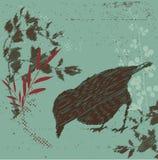 Grunge bird. Grunge stylized background with bird Royalty Free Stock Images