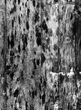 Grunge black wood texture Royalty Free Stock Photography
