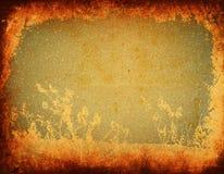 Grunge bloemen Royalty-vrije Stock Afbeeldingen