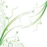 Grunge blom- bakgrund Royaltyfria Bilder
